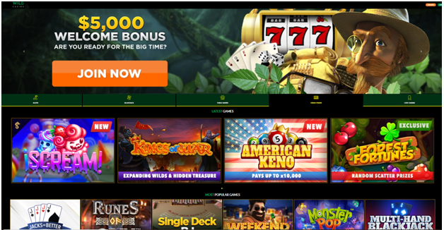 Six Online Casinos That Accept Bitcoin Cash- Wild Casino
